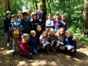 gemeinsamer Waldspatziergang